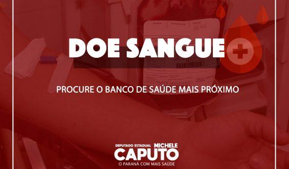 Veja onde doar sangue no Paraná
